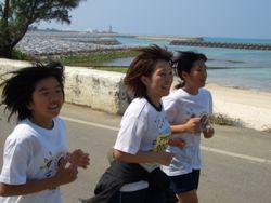 20080331-himawari2.jpg